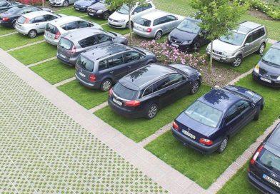 Для відвідувачів парку «Наталка» планують облаштувати гостьовий паркінг